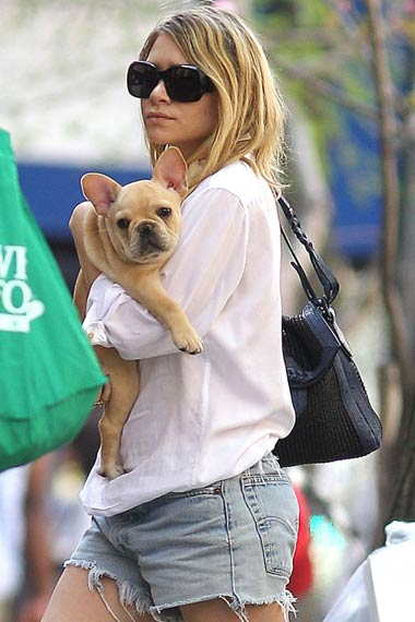 ashley-olsen-with-french-bulldog