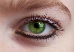 Genetic Dark Circles Under Eyes – Banish Dark Skin Under The  Eyes