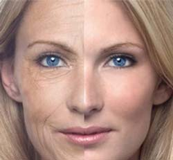 Anti Aging Formula: Setting the Clock Back