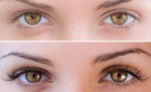 Do Eyelashes Grow Back? Truths and Facts about Eyelashes