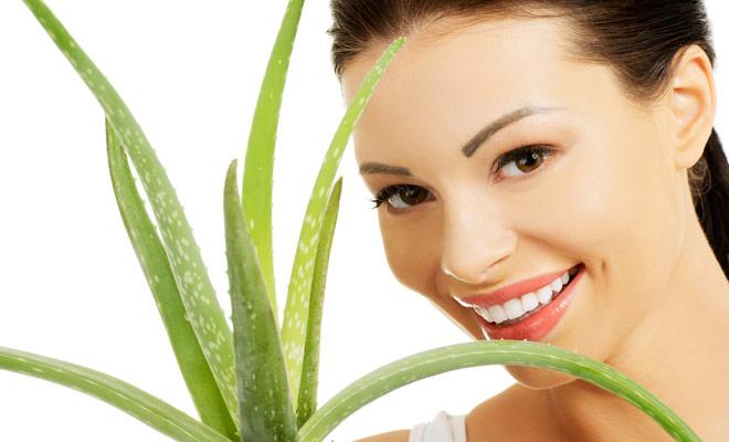 Treat Chapped Lips with aloe vera