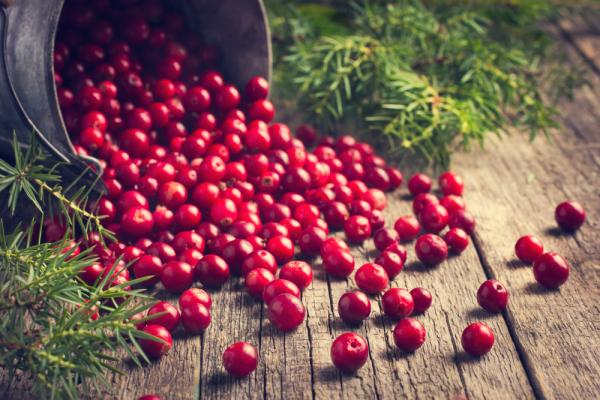 Thankgiving cranberry Food for Beautiful Skin