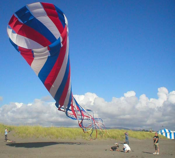 Kites Festival on Beach