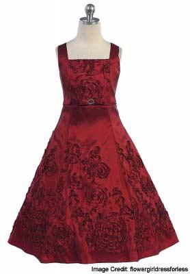 Embroidered Dark Burgundy Dress