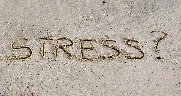 Stress Causes Frown Lines