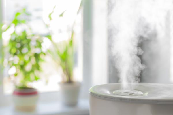 Use a humidifier to prevent wind chapped hands